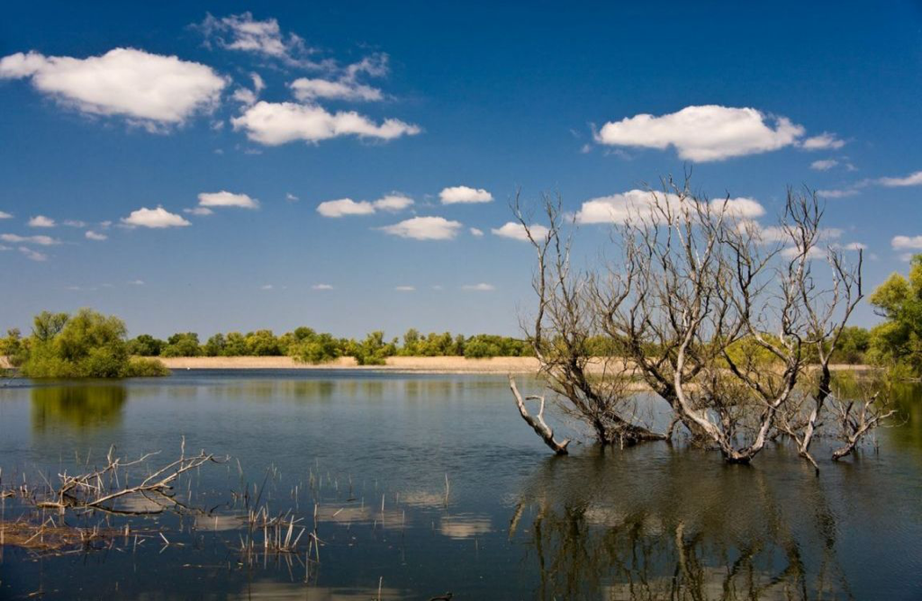 The Danube Delta. The Danube second largest river delta in Europe