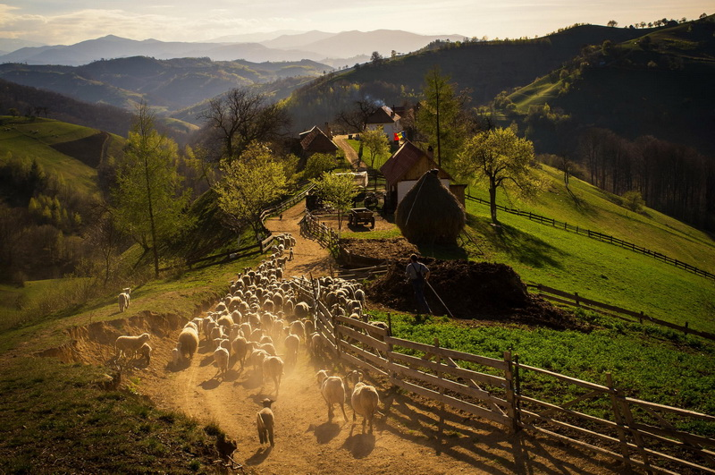 Transilvania country side